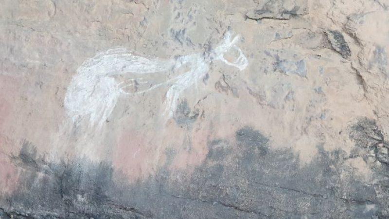 A rock art drawing of a kangaroo at Kakadu National Park
